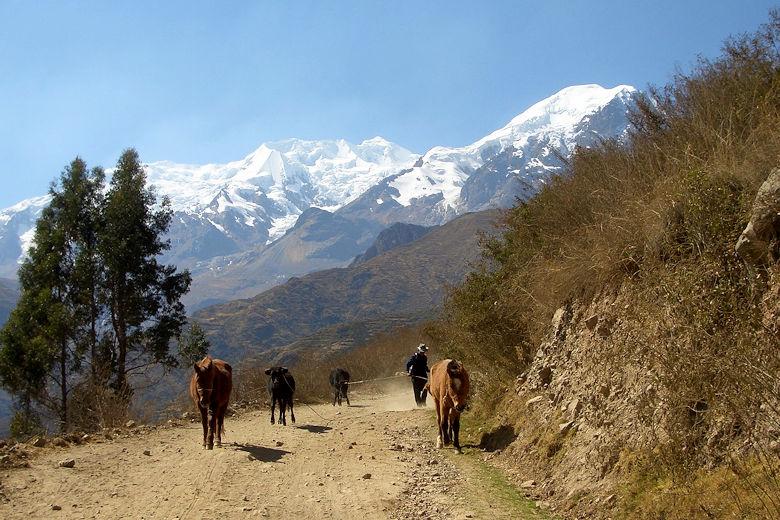 Steckbrief Bolivien