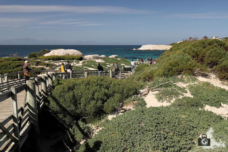 Südafrika - Boulders Beach