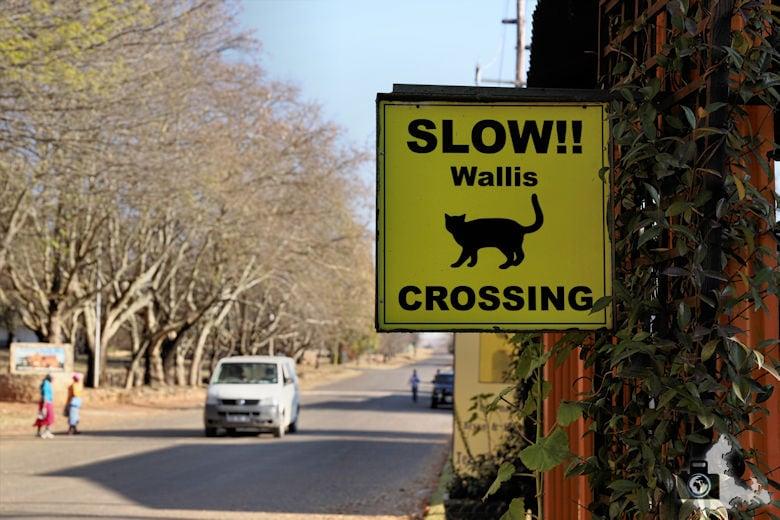 verkehrsregeln-suedafrika-tipps