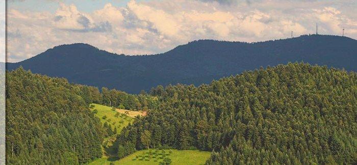Die schönsten Schwarzwald Berge in der Übersicht - meine Top 3