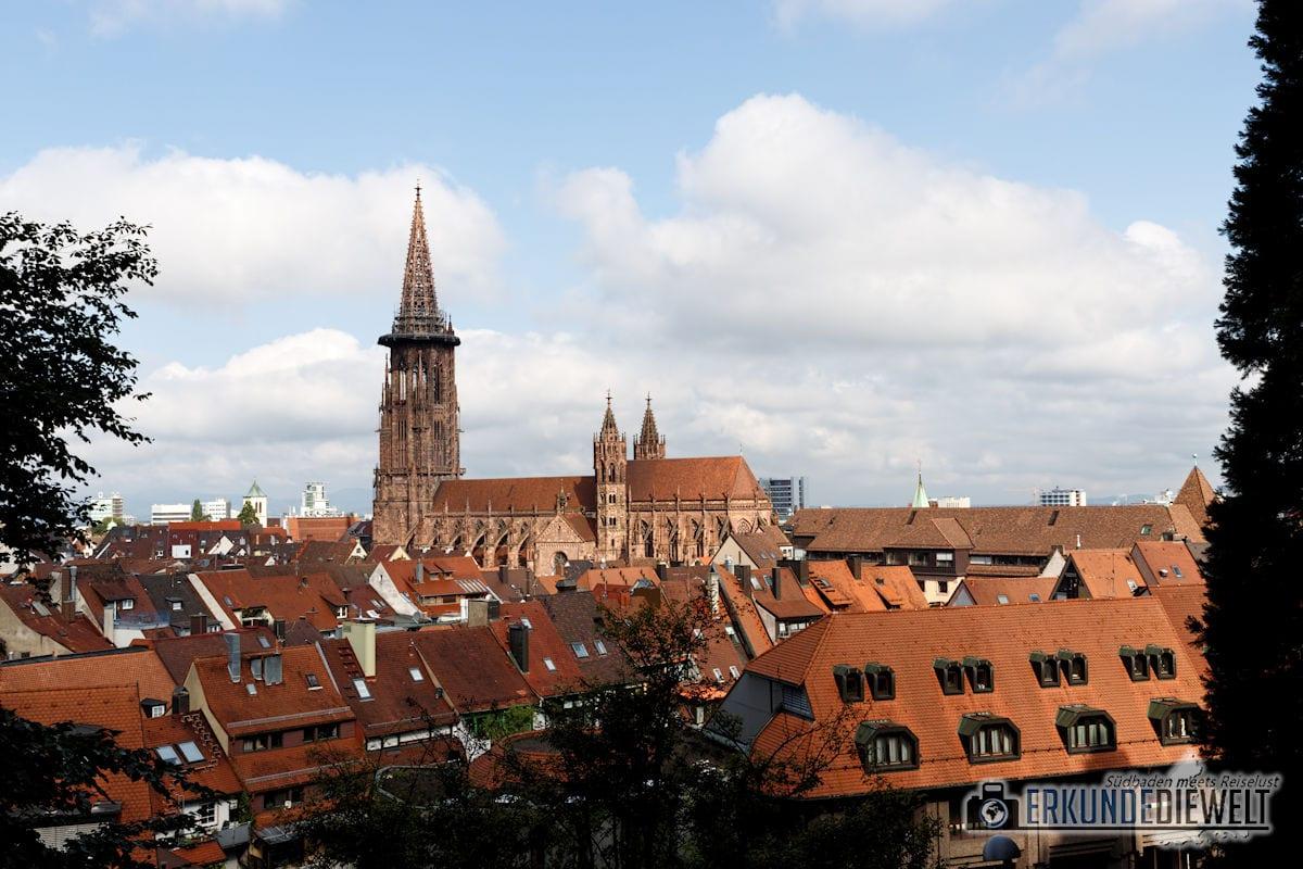 Bilder aus Freiburg - aufgenommen mit dem Canon 24-105 f/4 L IS II USM