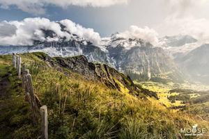 Schönstes Foto von moosearoundtheworld.de