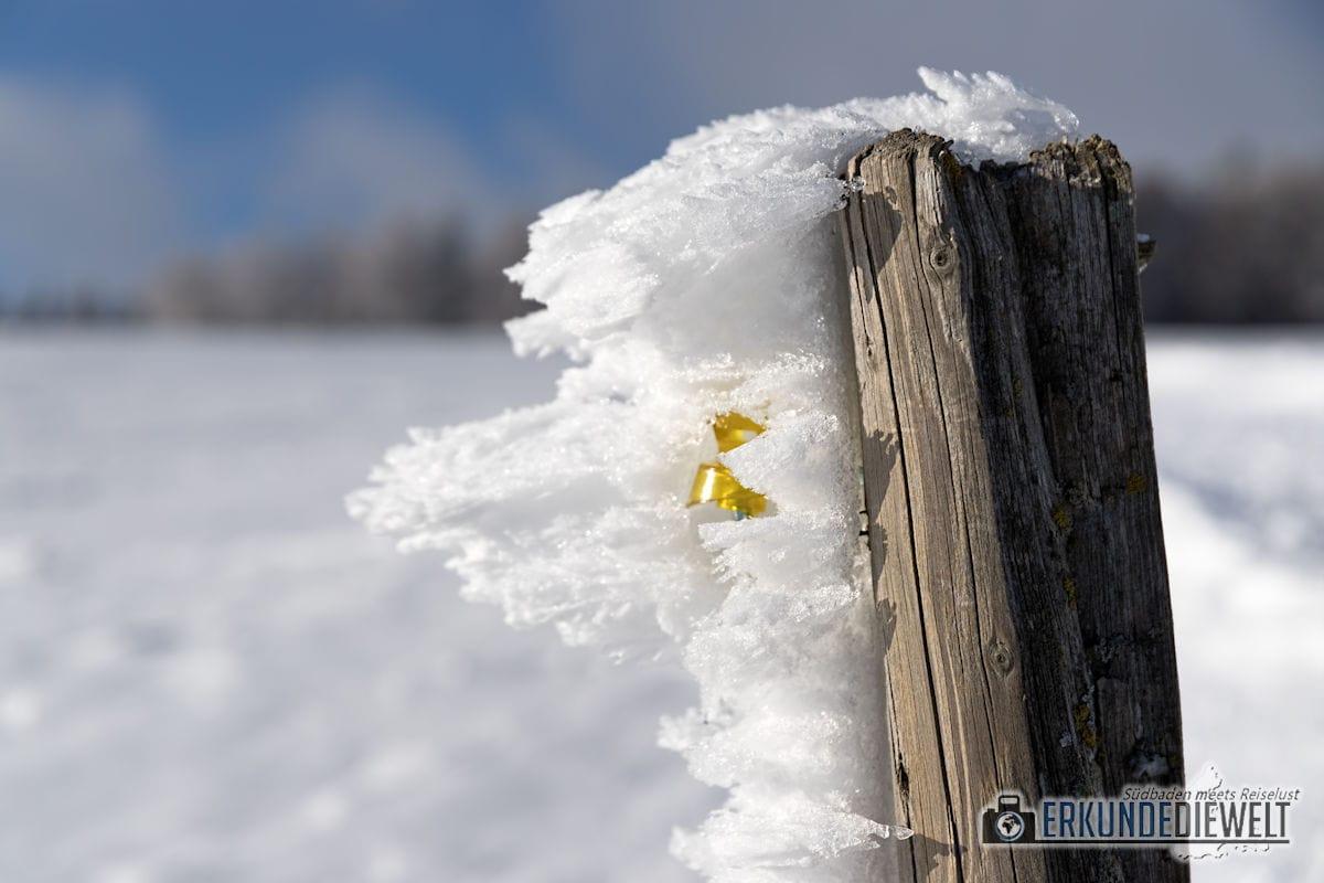 Beispielbild Canon 24-70 L IS USM - Pfahl im Schnee