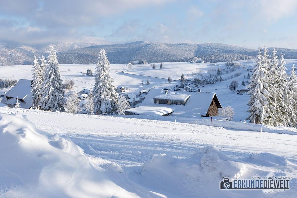 Beispielbild Canon 24-70 L IS USM - Schausinland im Winter