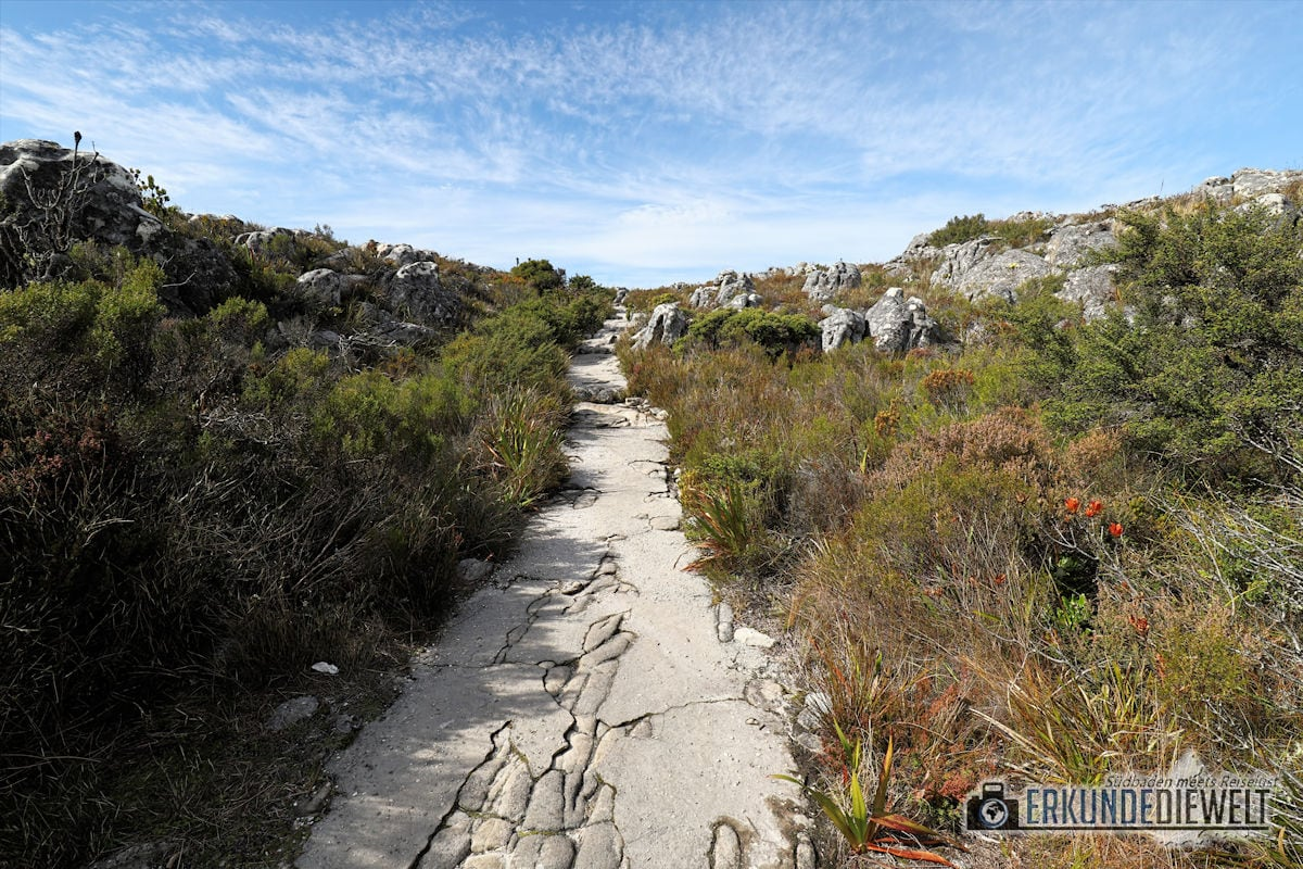 Beispielbild Canon 24-70 L IS USM - Tafelberg Südafrika