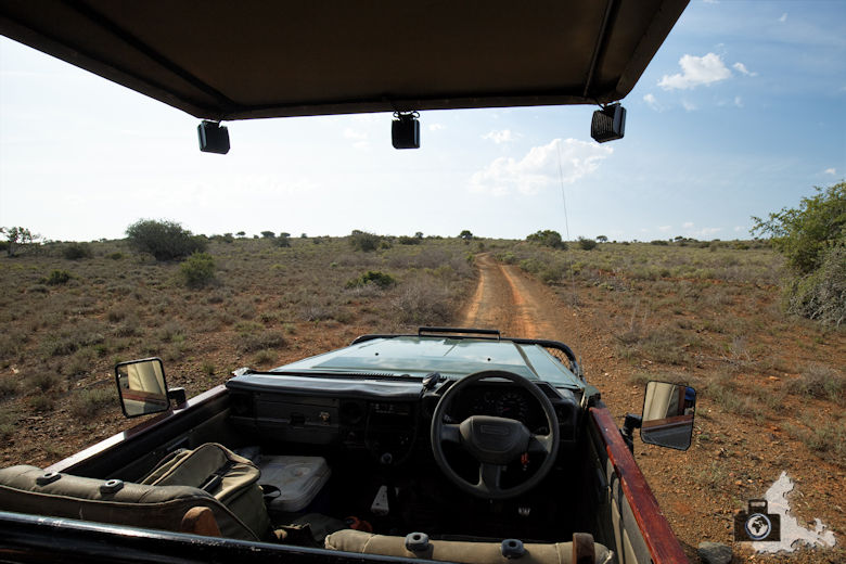 Safari Jeep der Kuzuko Lodge im Addo Elephant Nationalpark