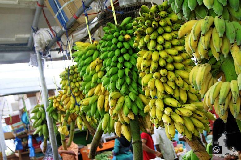 Markt auf Male, Malediven