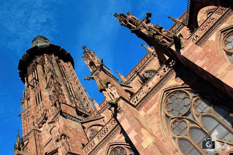 Freiburger Münster - Seitenansicht
