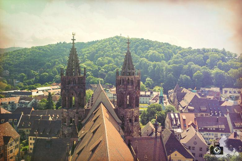 Freiburger Münster - Seitenschiff