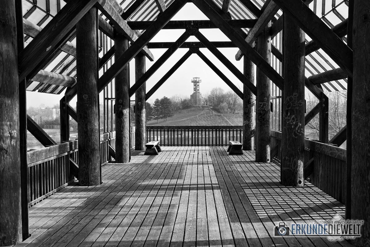 Fotowalk #6 - Seepark Freiburg - Seepark Turm