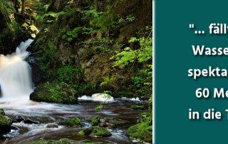 Die schönsten Schwarzwald Wasserfälle in der Übersicht