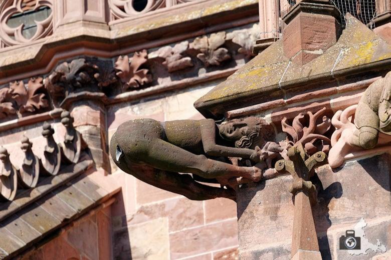Freiburger Münster - Wasserspeier mit blankem Hintern