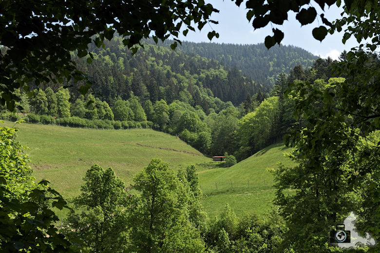 Sagenrundweg nahe den Allerheiligen Wasserfällen im Schwarzwald