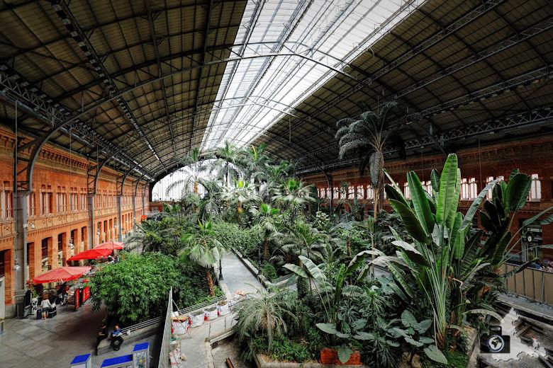 Bahnhof Madrid Atocha - Halle mit Palmen