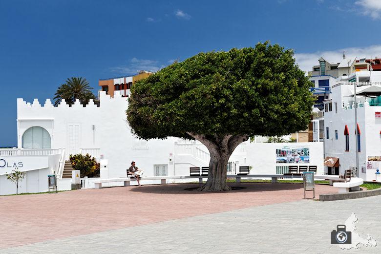 Reisebericht La Palma - Puerto de Naos