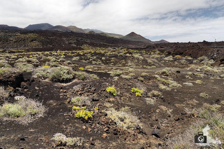 Reisebericht La Palma - Lava Landschaft im Süden
