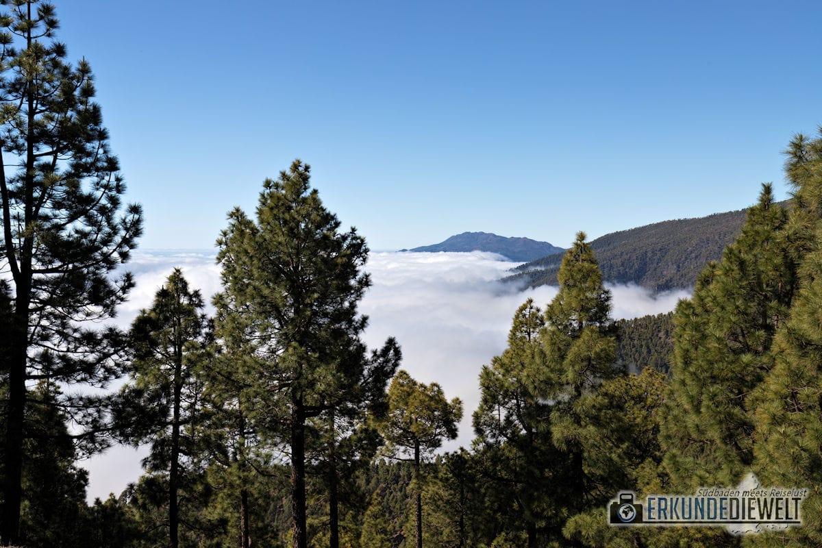 Hochland, La Palma, Kanaren