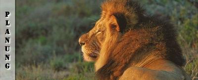 Südafrika Tipps Reisevorbereitung