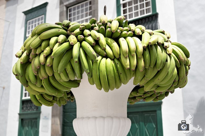 Santa Cruz de la Palma, Bananen