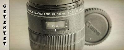Testbericht Canon EF 100mm f/2.8 L Macro IS USM