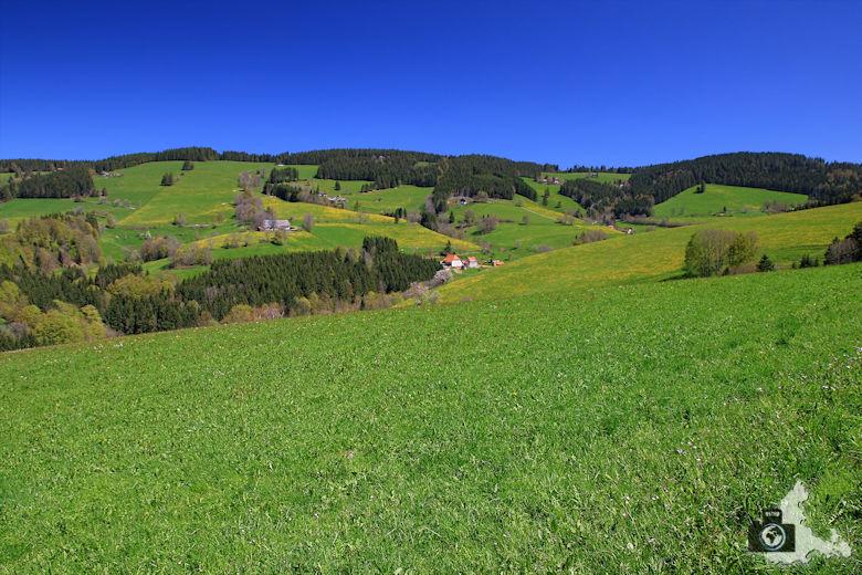Landschaftsfotografie: Berglandschaften und Berge fotografieren - Schwarzwald Berge