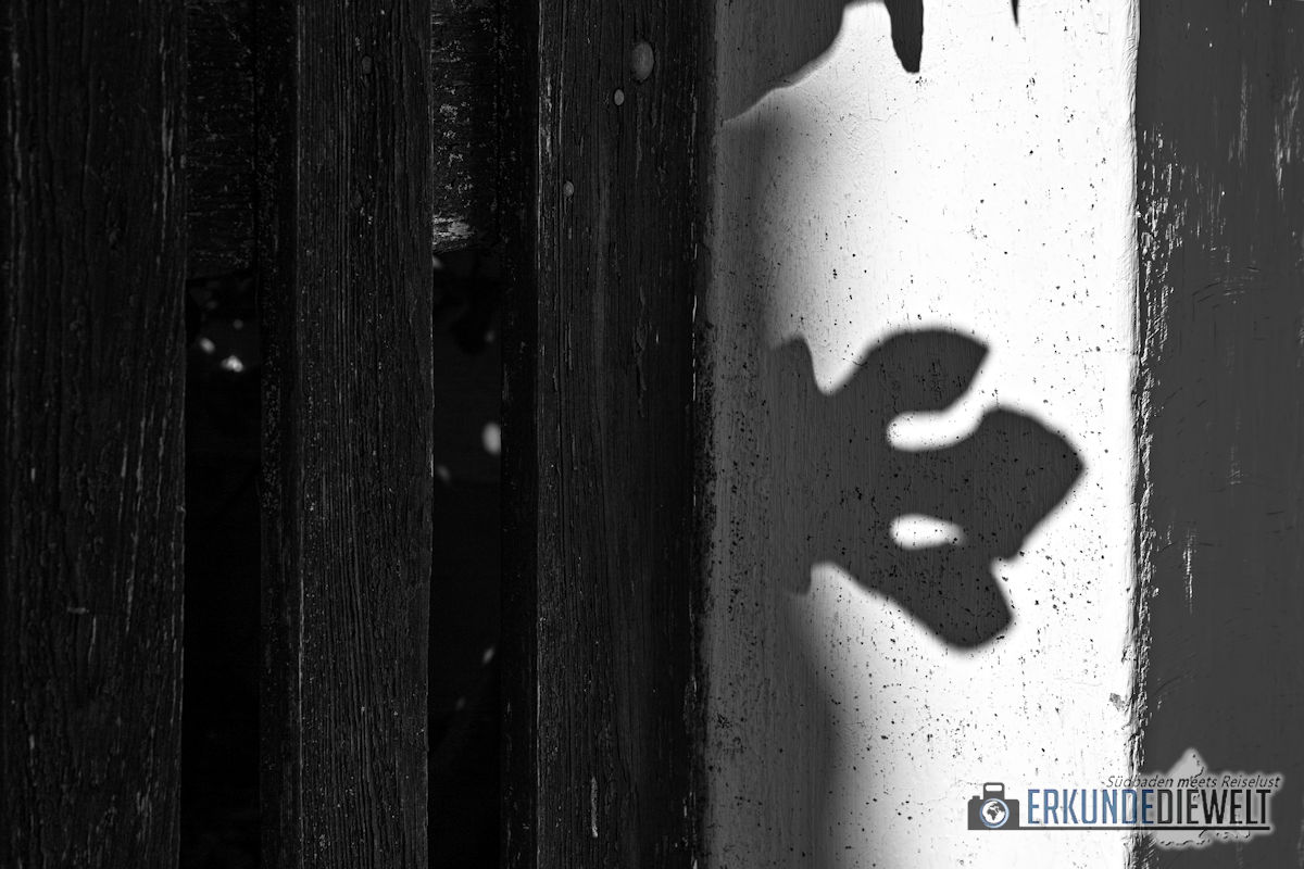 Fotowalk #8 - Licht & Schatten - Scharnier