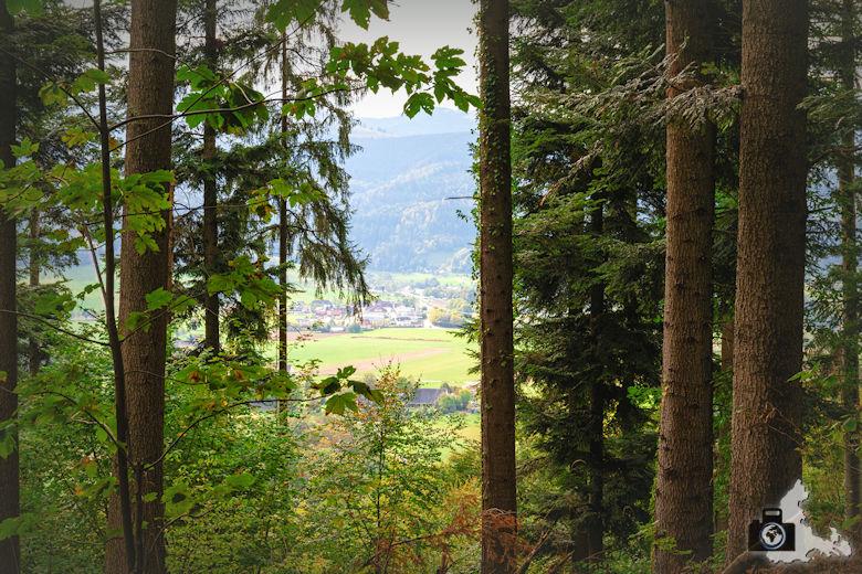 Wanderung Dreisamtal - Kapellenweg Stegen - Ausblick