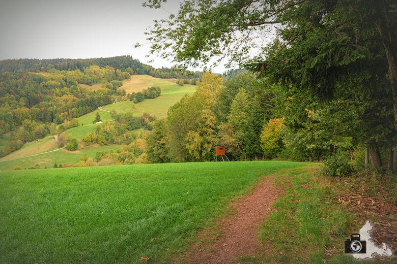 Wanderung Dreisamtal - Kapellenweg Stegen - Waldrand