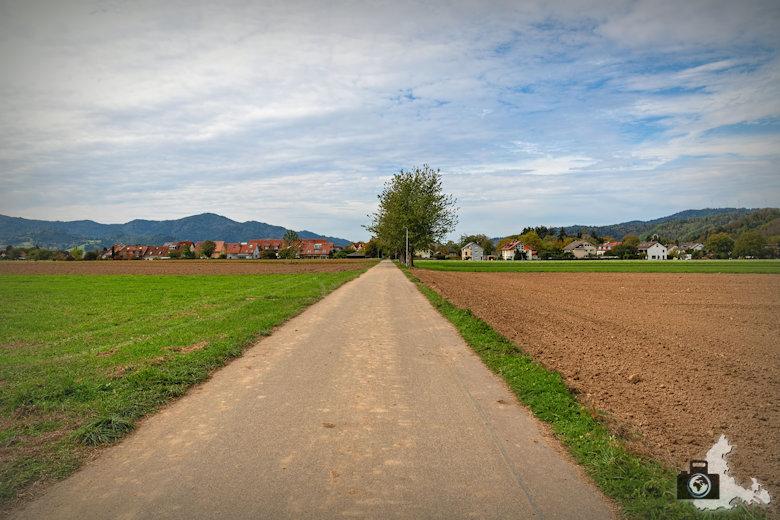 Wanderung Dreisamtal - Kapellenweg Stegen - Feldweg
