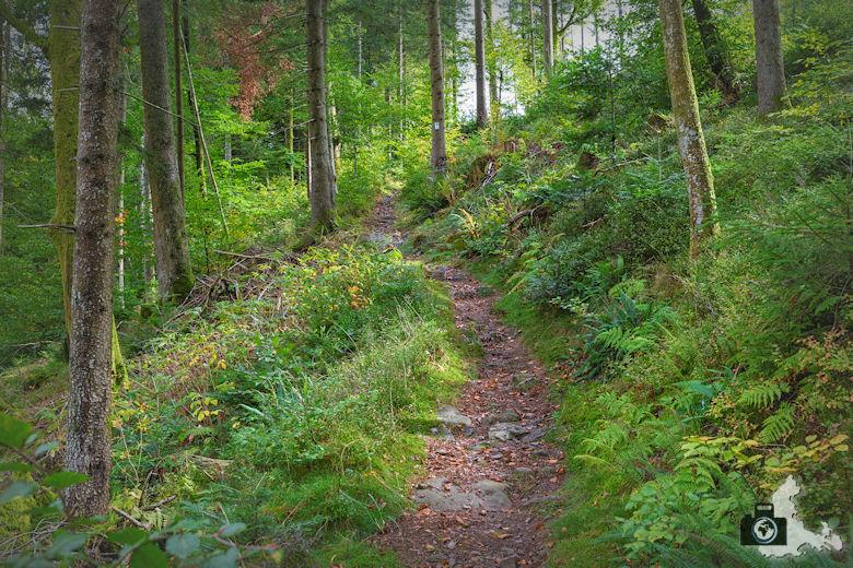 Annis Schwarzwald Geheimnis Baiersbronn - Auf dem Spuren von Avalee - Wanderweg