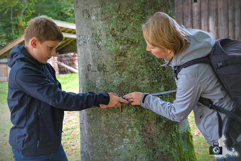 Annis Schwarzwald Geheimnis Baiersbronn - Auf dem Spuren von Avalee - Baum vermessen