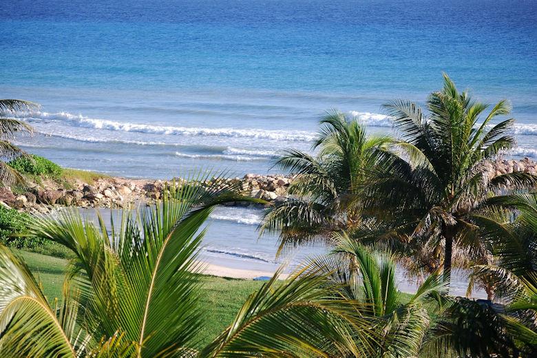 Steckbrief Jamaika