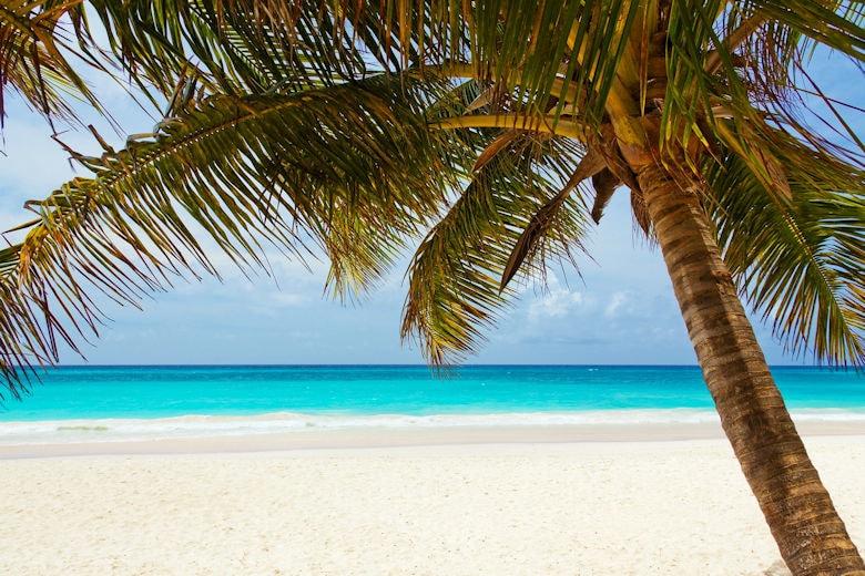 Karibik Kreuzfahrt auf Weltreise