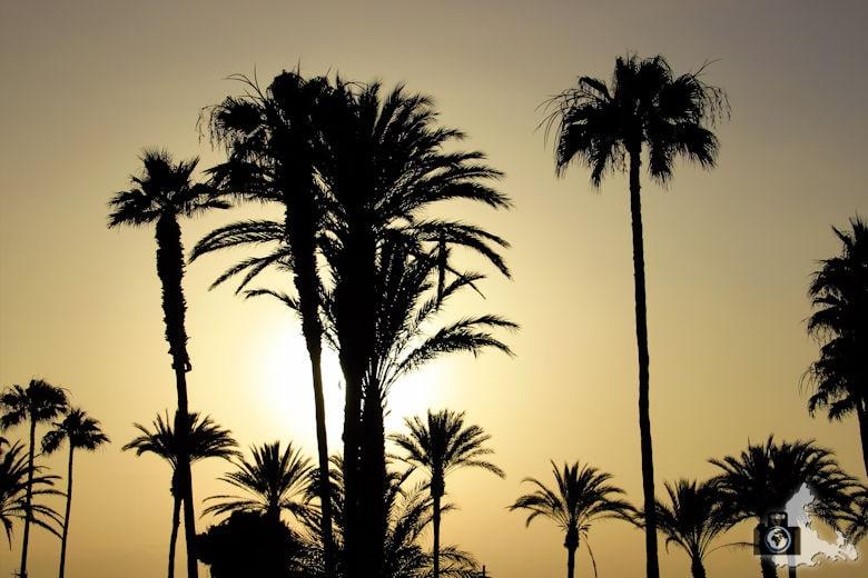 Tipps zum Fotografieren an Strand & Küste - Sonne im Gegenlicht