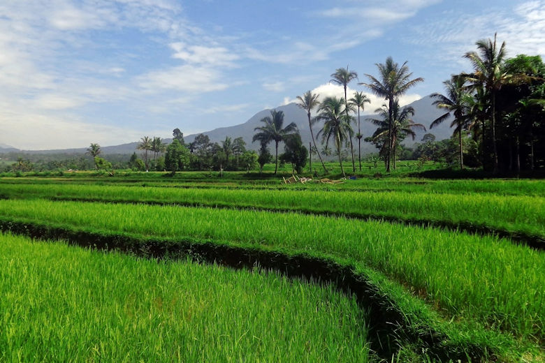 Steckbrief Indonesien