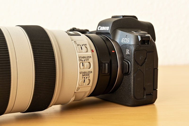 Canon EOS R Testbericht - Teleobjektiv mit Adapter