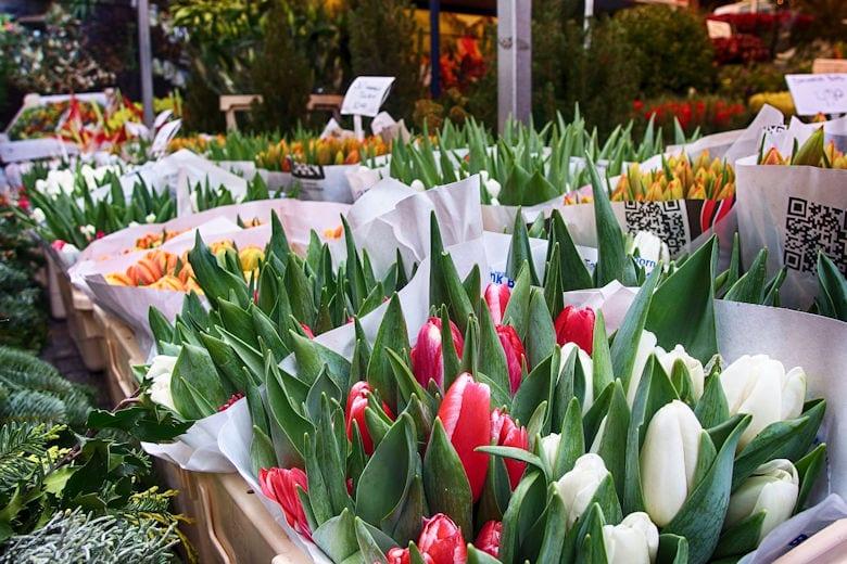 fotografieren-in-amsterdam-bloemenmarkt