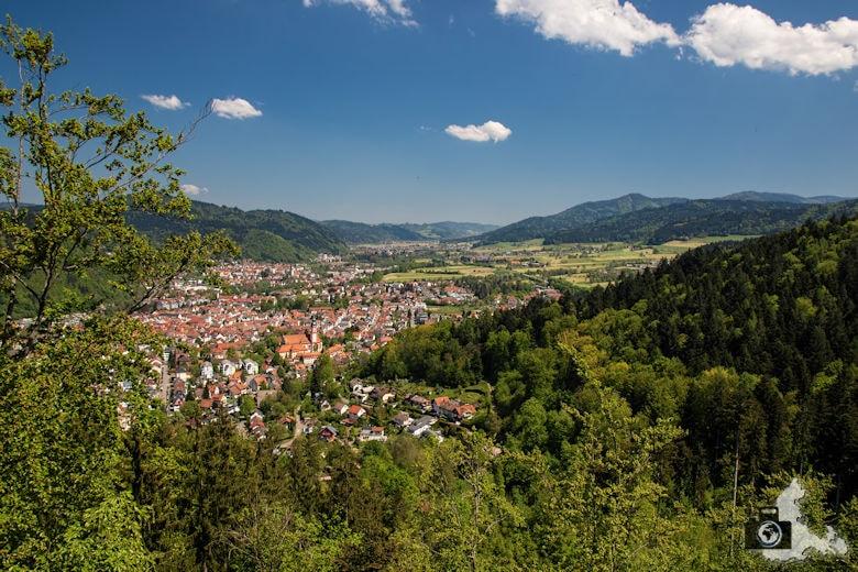 Waldkirch im Schwarzwald - Baumkronenweg Waldkirch