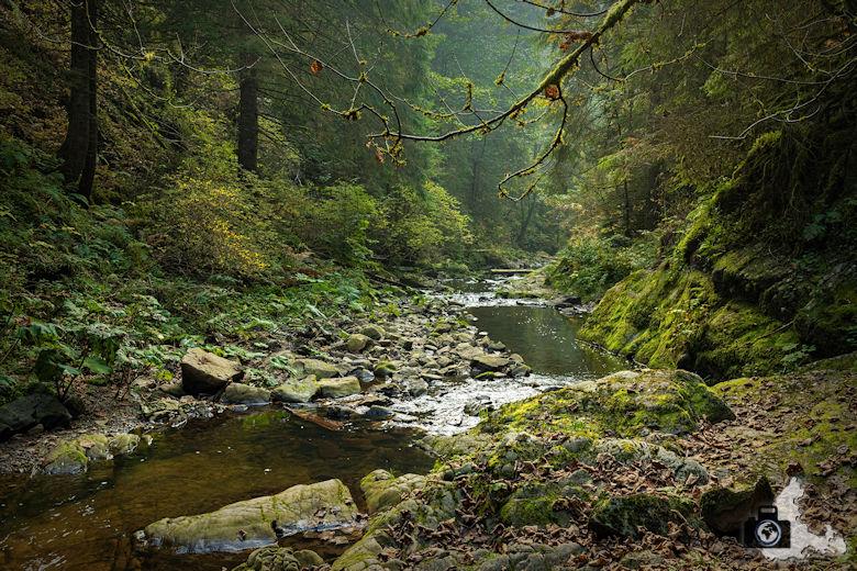 Schwarzwälder Genießerpfad - Rötenbachschlucht - Rötenbach