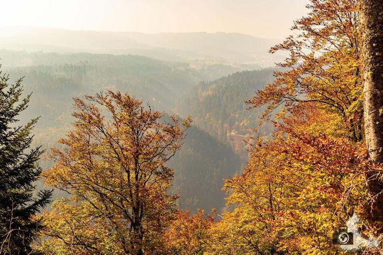 Schwarzwälder Genießerpfad - Rötenbachschlucht - Aussicht