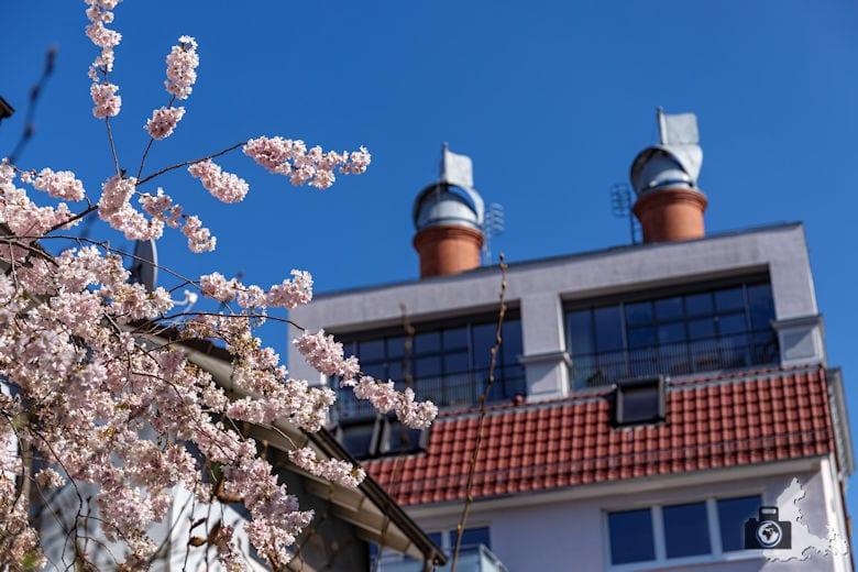 Frühling, Freiburg, Stadtteil Stühlinger