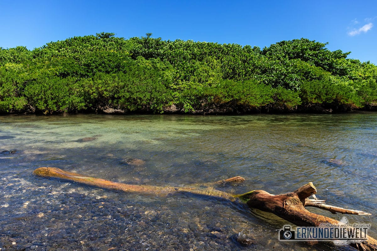 Ilot aux Sancho, Mauritius