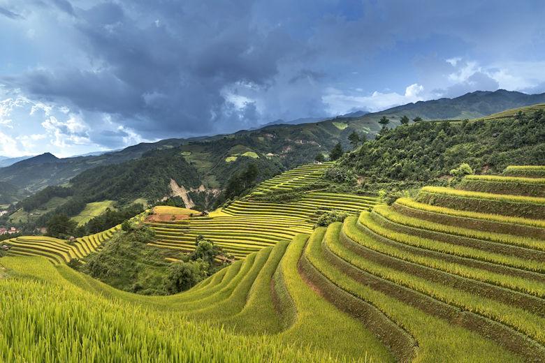 Steckbrief Vietnam, Asien | Erkunde die Welt