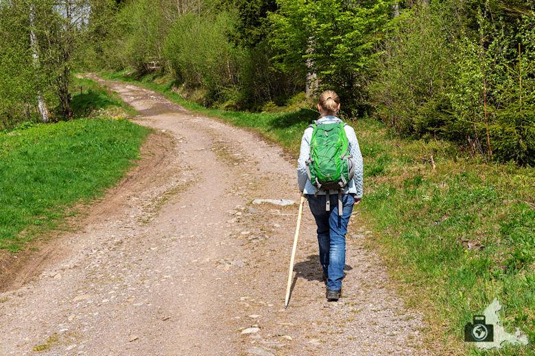 Schwarzwälder Genießerpfad - Säbelthomaweg Hinterzarten - Wanderer