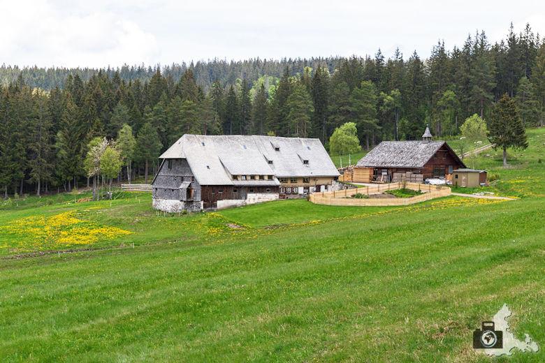 Schwarzwälder Genießerpfad - Säbelthomaweg Hinterzarten - Häuslebauernhof