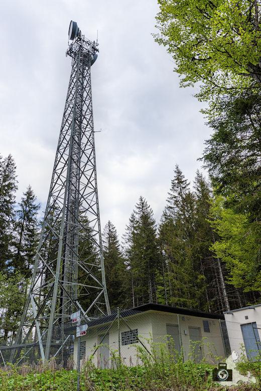 Schwarzwälder Genießerpfad - Säbelthomaweg Hinterzarten - Funkturm