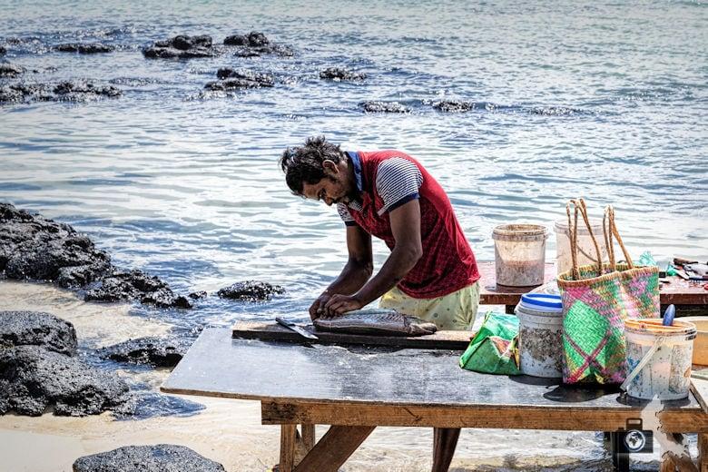 Fischer, Cap Malheureux, Mauritius