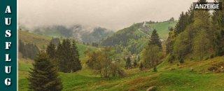 Berggeheimnis Schauinsland - 2080 Linus: Das Wasser kommt
