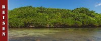 mauritius-rochester-falls-alexandra-falls