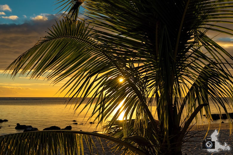 Fotowalk #9 - Am Strand von Mauritius - Sonnenuntergang hinter Palmen